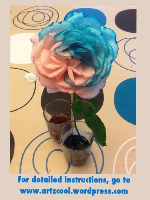 Food colouring roses | ARTZCOOL\'S BLOG!